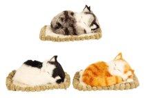 Katze mit Stimme auf Decke(14x11cm)