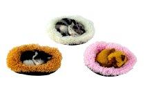 Katze mit Stimme auf Decke(13x11cm)