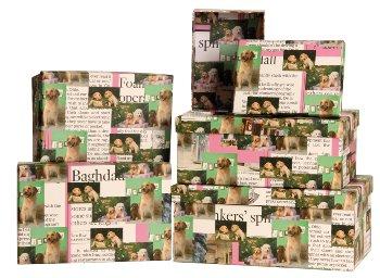 Boxen mit Hunden Motiv 5er-Set-Preis
