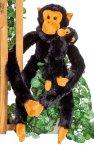 Affe mit Baby und langen Armen & Beinen
