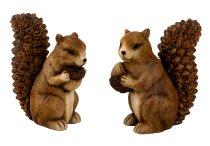 Eichhörnchen mit Nuss h=18+18,5cm sort.