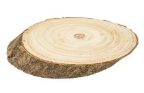 Baumscheibe mit Rinde ca. 22x12x2cm