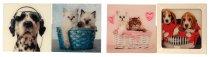 Glasbild 'Hunde & Katzen' 30x30cm sort.